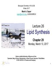 Lecture25_LipidSynthesis_Mar13_Saper_FINAL