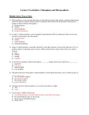 Lecture 13 worksheet_KEY