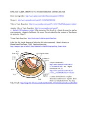 Invertebrate Dissections Online
