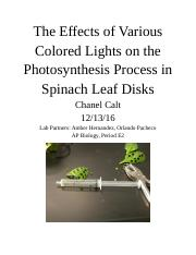 The Effects of Various Colored Lights on the Photosynthesis Process in Spinach Leaf Disks