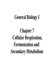 Chapter 7 Respiration(2).ppt