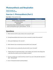 44-0102-00-02_RPT_Photosynthesis_and_Respiration.docx