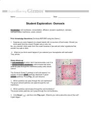 Osmosis Worksheet Pdf Name Date Student Exploration Osmosis Vocabulary U200b U200b Cell Membrane Concentration Diffusion Dynamic Equilibrium Osmosis Course Hero
