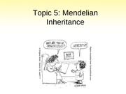 Topic 5- Mendelian genetics