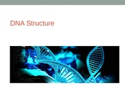 Topic 10- DNA structure
