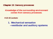 WL 4-21-11 sensory mechno and chemical