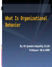 1- Organizational Behavior& foundations of individual behaviour (1)