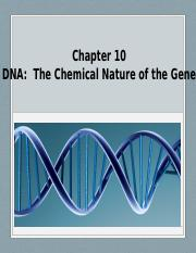 Student Chapter 10 DNA Chemical Nature of the Gene (3).pptx