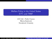 Eco 383 - Welfare