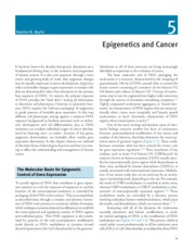 Epigenetics and Cancer