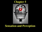 Chapter5-Sensation+and+Perception (1)