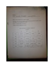 Spanish 3 partner worksheet