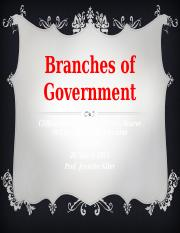 HIS 301 Branches of Government_TeamC WK 2
