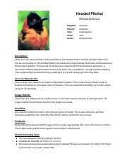 Copy of AP Biology Unusual Species Template