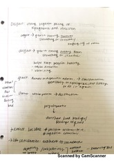 Test 4 Class Notes