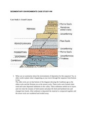 SEDIMENTARY ENVIRONMENTS CASE STUDY HW