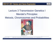 Lecture+3+Topic+II+Transmission+Genetics+II