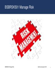 BSBRSK501 Manage Risk - Slide Show.pdf