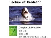 Lecture 20 Predation post