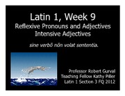 Latin1 FQ 2012 Week 9 Seminar3Reflexives