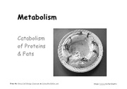 10_Metabolism_Catabolism_Fats_Proteins