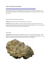 geo Lab 4 - Sedimentary Rock Identification(1).doc
