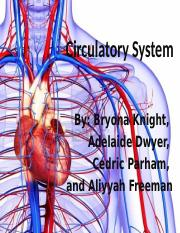 Circulatory System power point 2