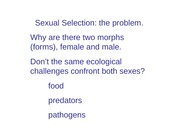 lecture 10TT_sexual_selection