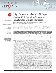 High Performance Fe- and N- Doped