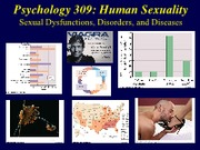 PSY309-2013SP-16-DisordersDiseases