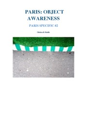 PARIS OBJECT AWARENESS