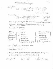 Lecture 5 (flocculation theory).pdf