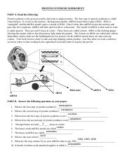protein-synthesis-worksheet.pdf
