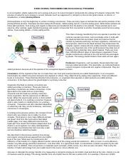 Food Chains Food Webs And Energy Pyramids Ace Energy