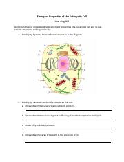 Emergent Properties and Cell Structures .pdf