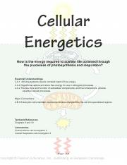 Unit Study Guide 6 Cellular Energetics.pdf
