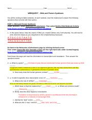 WEBQUEST - DNA and Protein Synthesis.docx