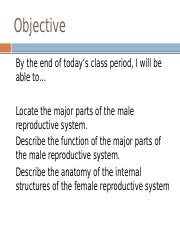 3. Male_and_Female_Reproductive_Organs_ppt....pptx