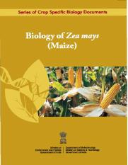 Biology_of_Maize[1].pdf