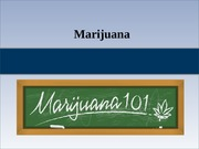 13 - Marijuana updated F 2013 (Student)