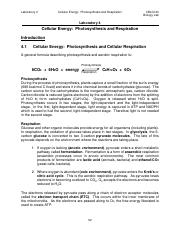 Lab 4 Cellular Energy Photosynthesis Fall 2015 (1).pdf