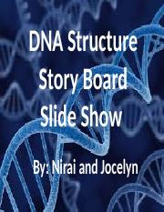 DNA Structure Story Board Slide Show.pptx