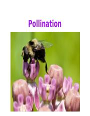 Lecture 3 - Pollination.ppt