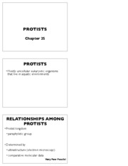 Protists_notes
