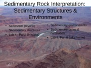 Sedimentary Environs Structures