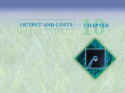 Chapter 10 - Outputs and Costs