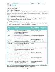 11.2 bio.doc - Name Alexis Mayzak Class Date 11.2 Applying ...