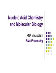 13 RNA Processing Students Part A (PDF)