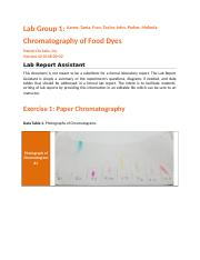 44-0148-00-02_RPT_Chromatography_of_Food_Dy.docx