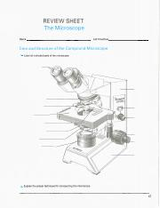 microscope RS scan.pdf